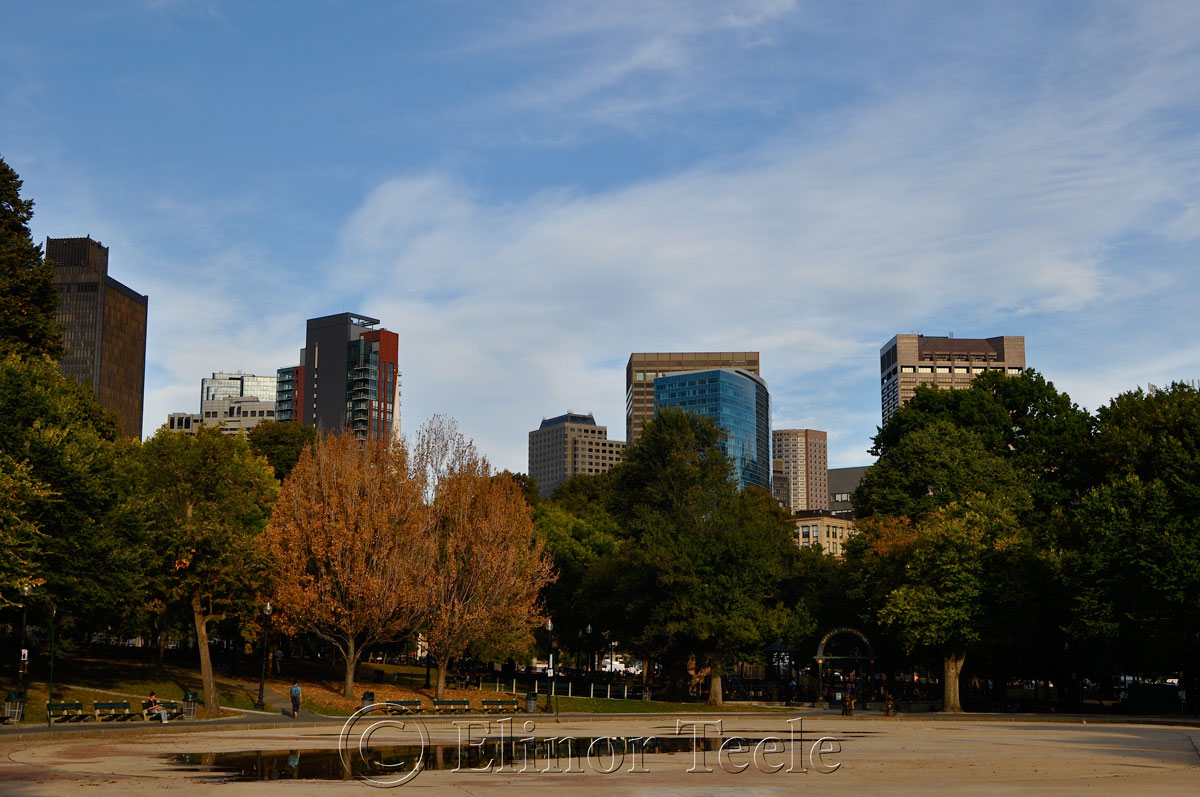 Frog Pond, Boston Common in October