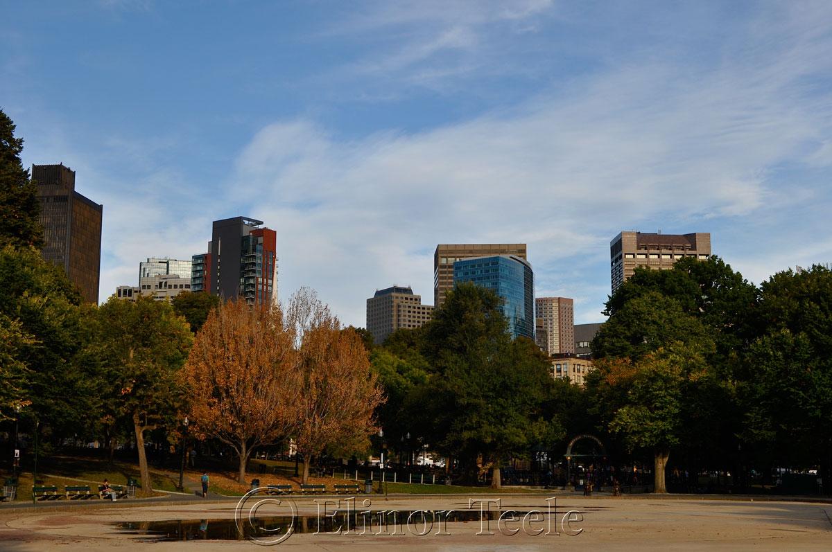 Frog Pond, Boston Common in October