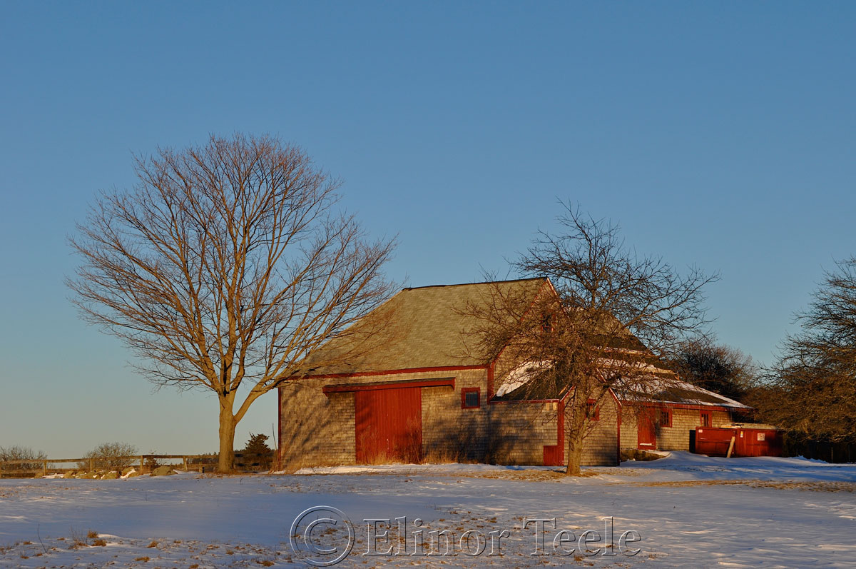 Barn in Winter, Essex MA 1