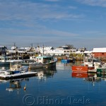 Motif 1 in the Snow, Rockport MA 2