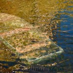 Sunken Boat, Annisquam MA