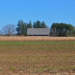 April Fields, Appleton Farms, Ipswich MA