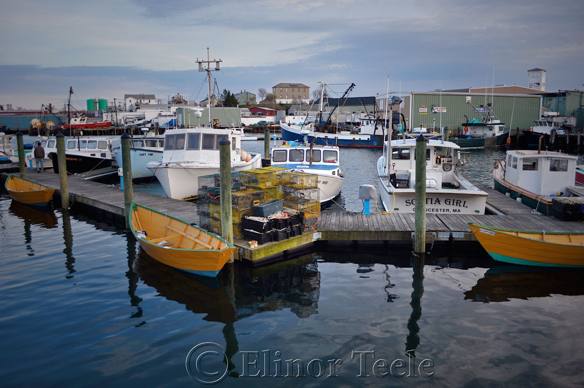 Gloucester Harbor in Spring, Gloucester MA