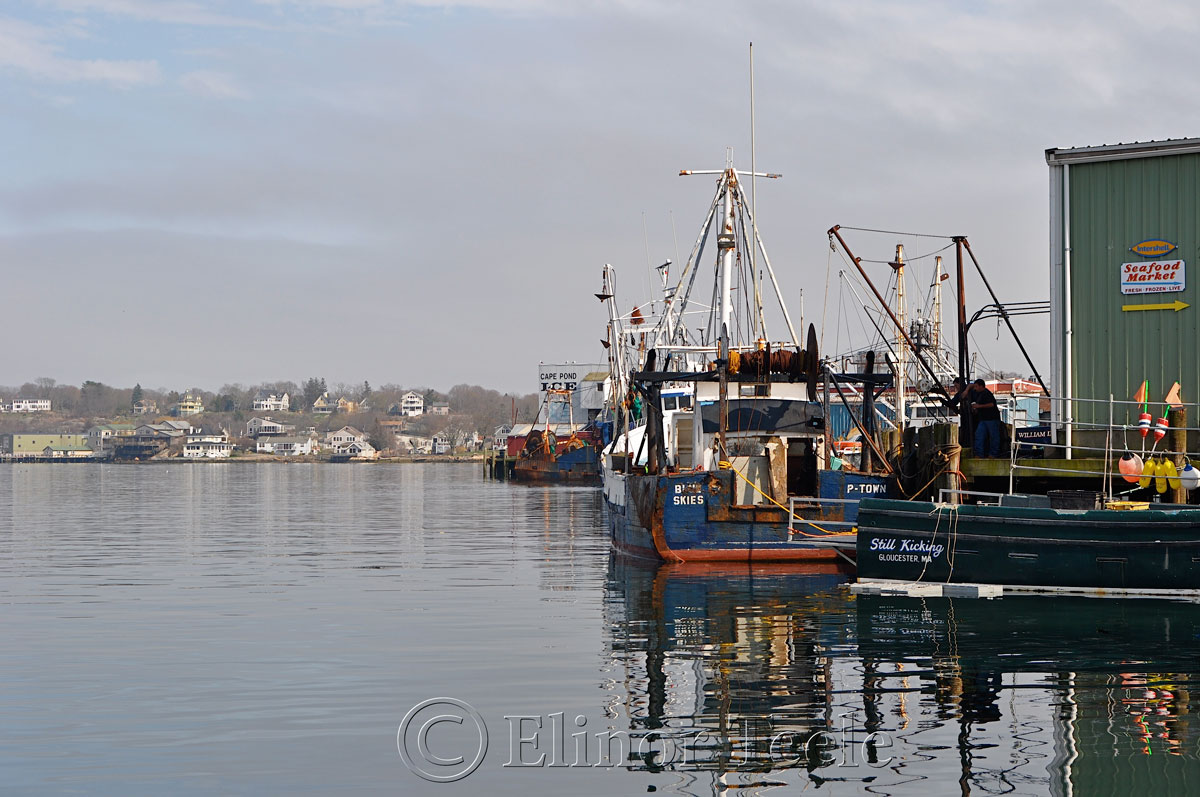 Fog Lifting on Gloucester Harbor, Gloucester MA 4