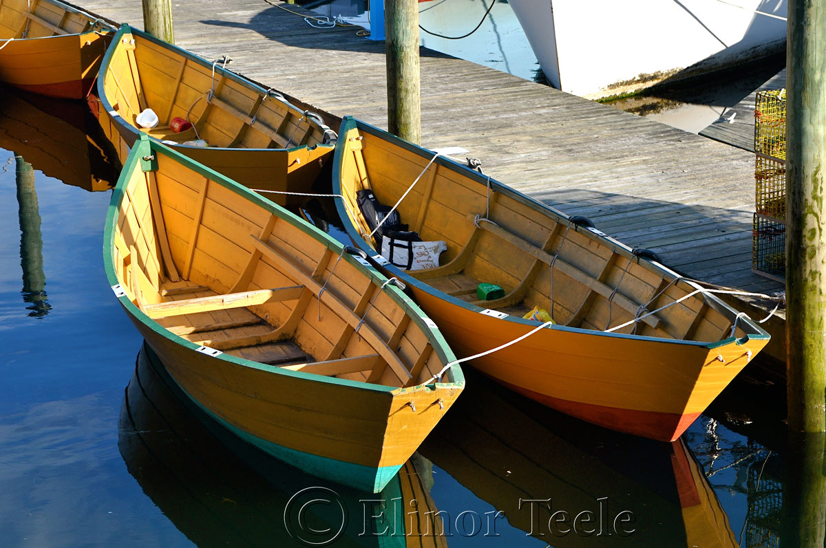 Gloucester Dories, Harbor Cove, Gloucester MA 2