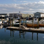 Harbor Cove, Gloucester MA 2