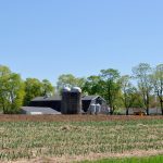 Milking Barn in May - Appleton Farms