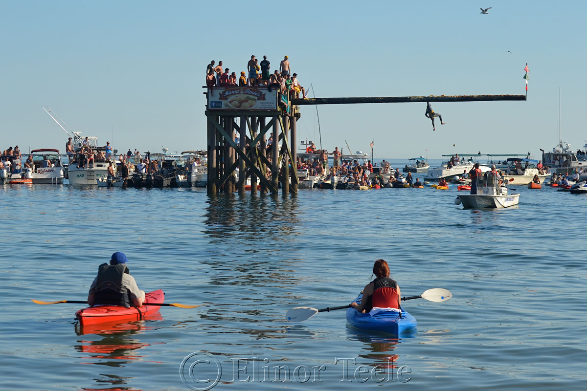 Greasy Pole, Friday 6/27/14, Gloucester MA 3