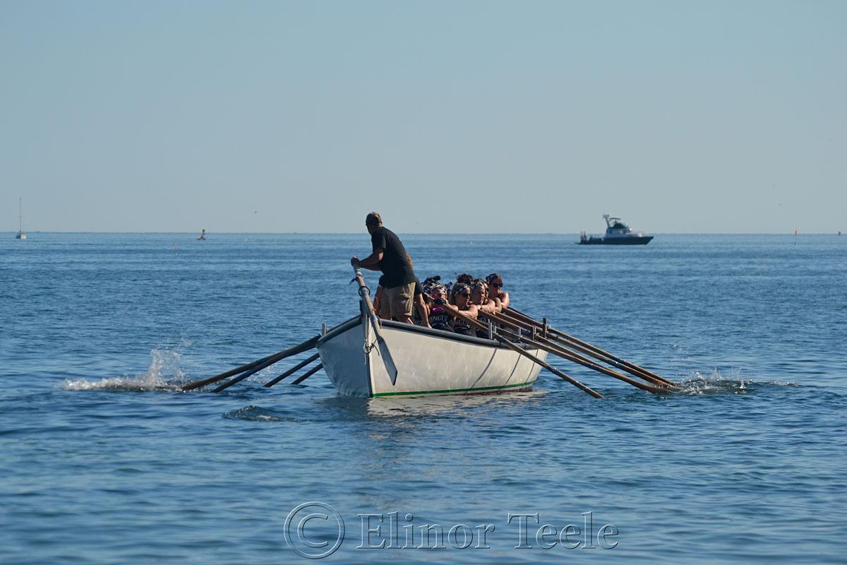 Rowgue, Seine Boat Races, Fiesta, Gloucester MA 3