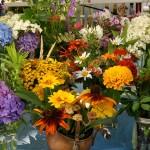 Annisquam Sea Fair 2014 - Flower Table 2