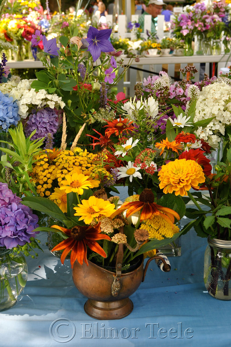 Annisquam Sea Fair 2014 – Flower Table 2
