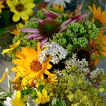 Annisquam Sea Fair 2014 - Flower Table 9