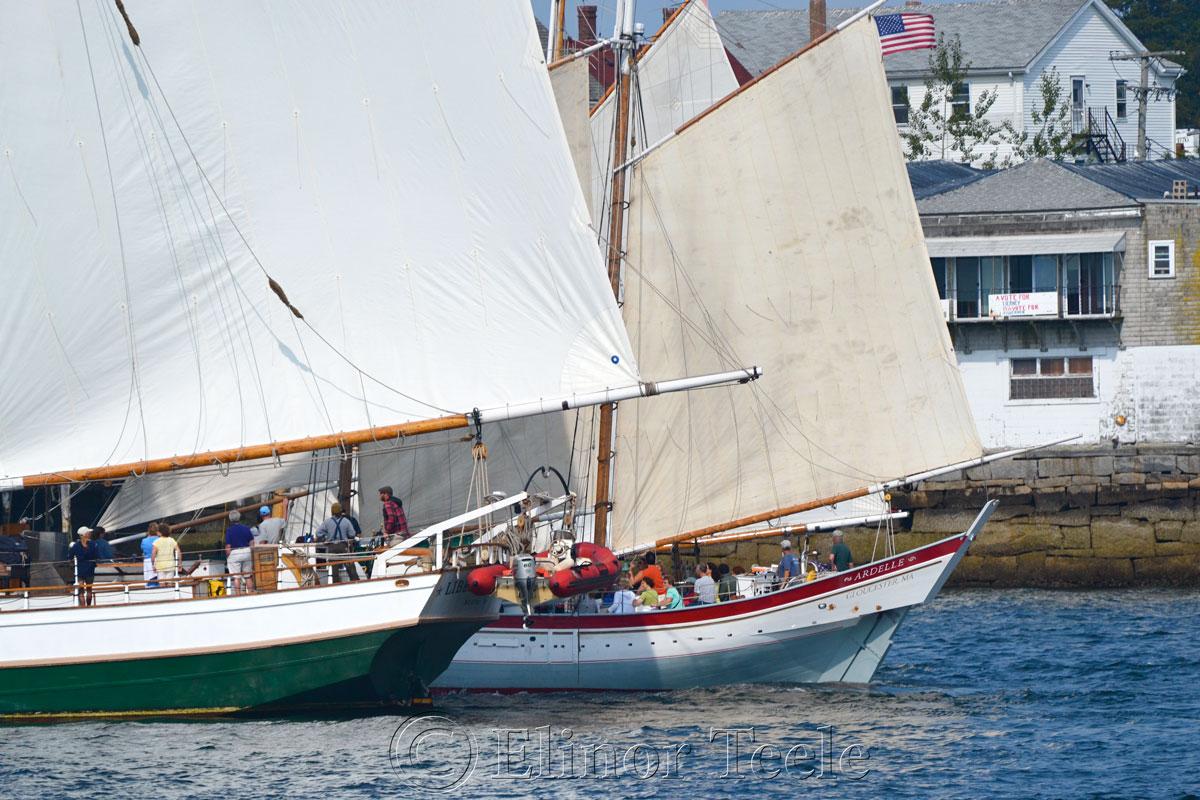 Parade of Sail, Gloucester Schooner Festival 2014 1