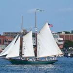 Parade of Sail, Gloucester Schooner Festival 2014 2