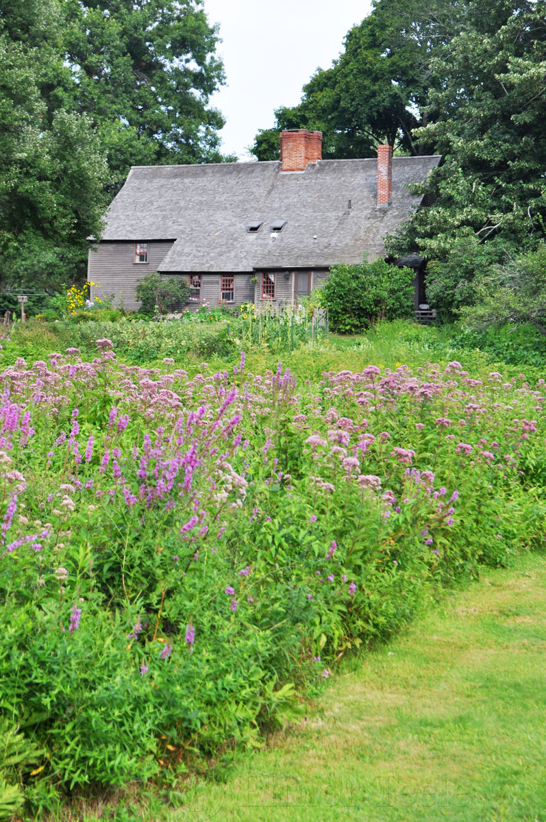 Whipple House, Ipswich MA 2