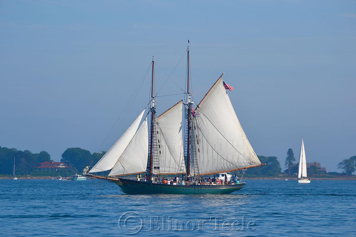 Schooner Thomas Lannon - Harbor Sail 3