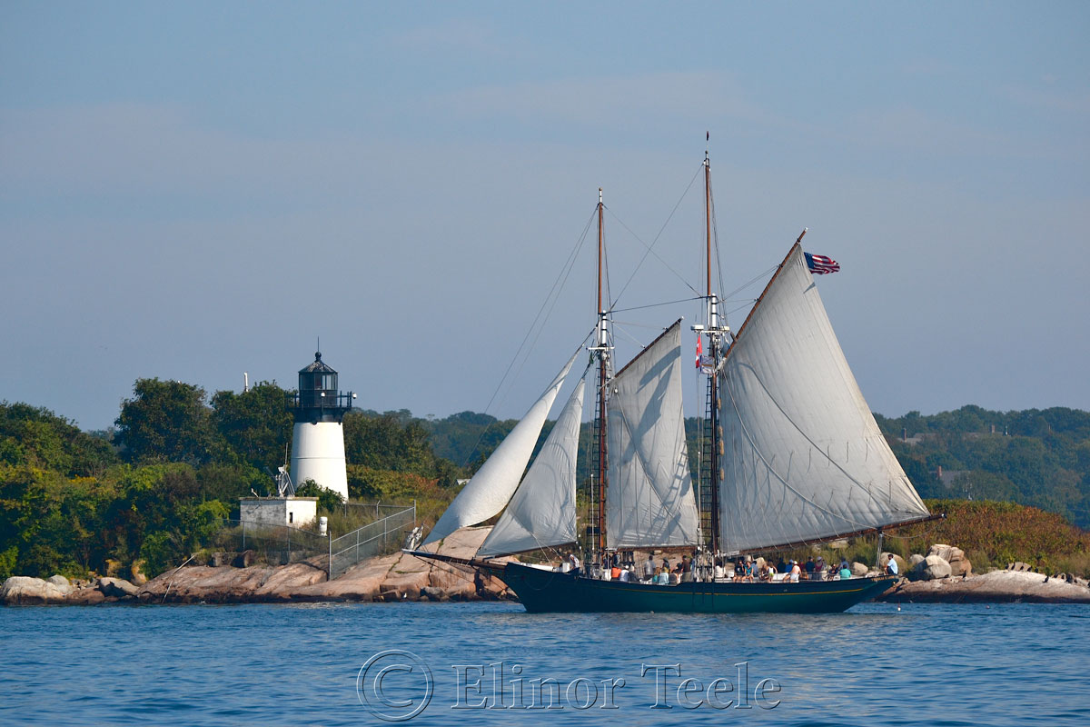 Schooner Thomas Lannon - Harbor Sail 4