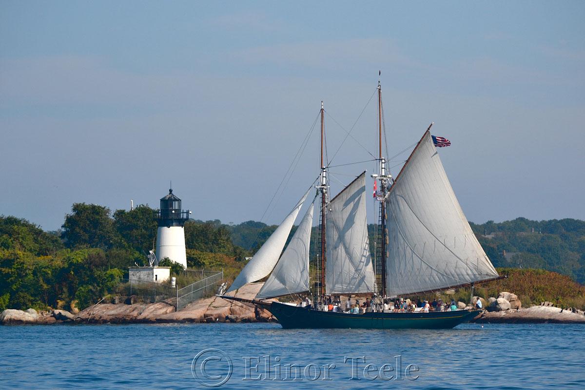 Schooner Thomas Lannon - Harbor Sail 4