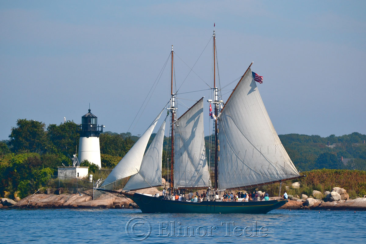 Schooner Thomas Lannon - Harbor Sail 5