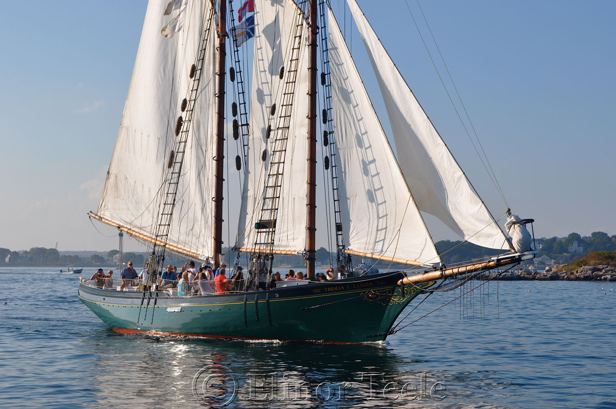 Schooner Thomas Lannon - Harbor Sail 7