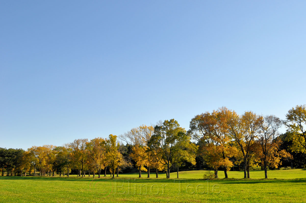 Appleton Farms in October, Ipswich MA 2014 1