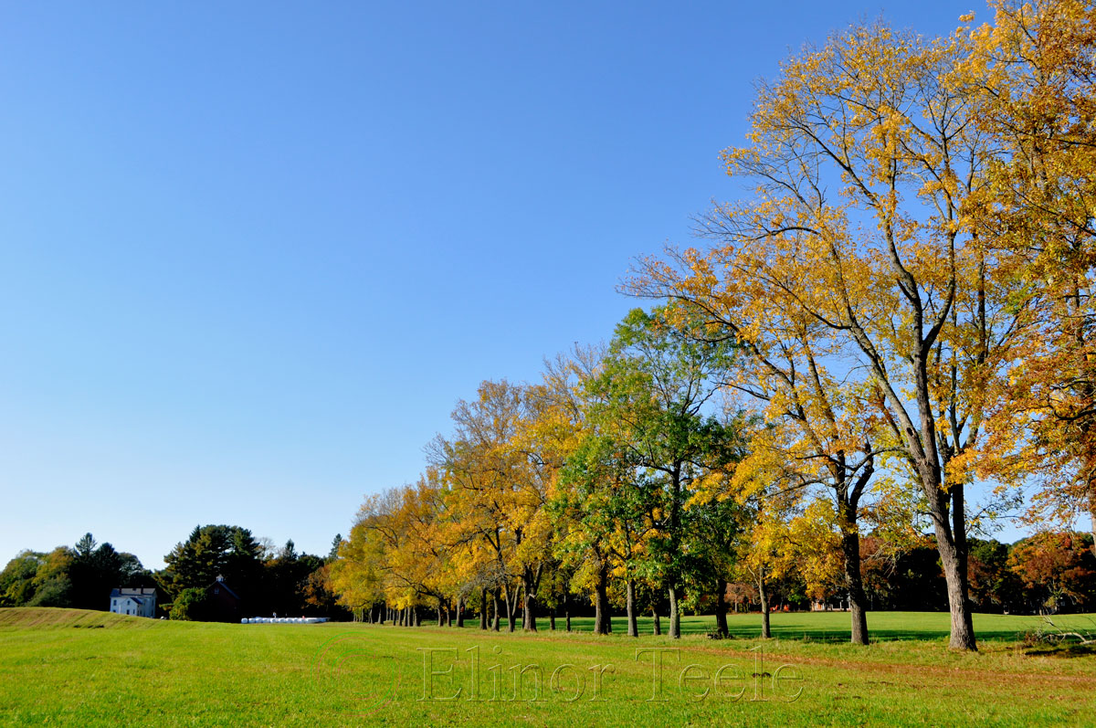 Appleton Farms in October, Ipswich MA 2014 2