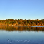 Gold Foliage, Goose Cove Reservoir, Gloucester MA 1