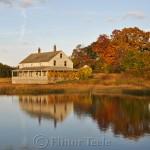 Mabel Burnham House, October Foliage, Essex MA 3