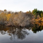 Goose Cove Reservoir on a November Afternoon, Gloucester MA 1