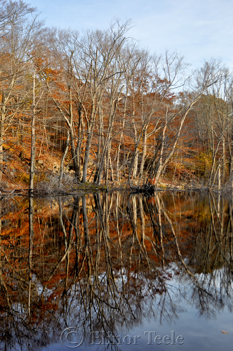 Goose Cove Reservoir on a November Afternoon, Gloucester MA 3