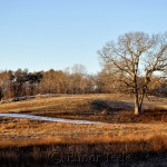 Appleton Farms - January 2015