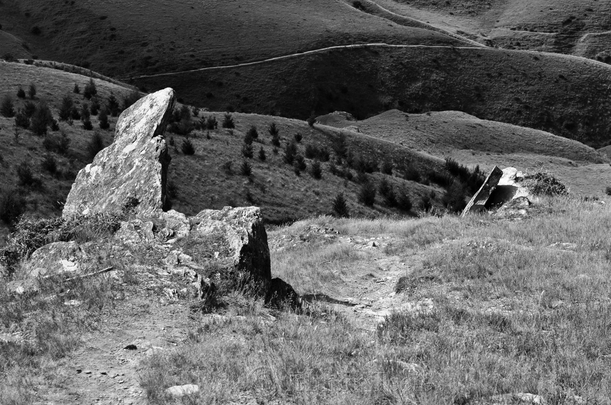 Above Sawpit Gully, Arrowtown
