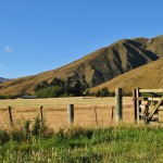 Farm Gate, Crown Terrace, Central Otago
