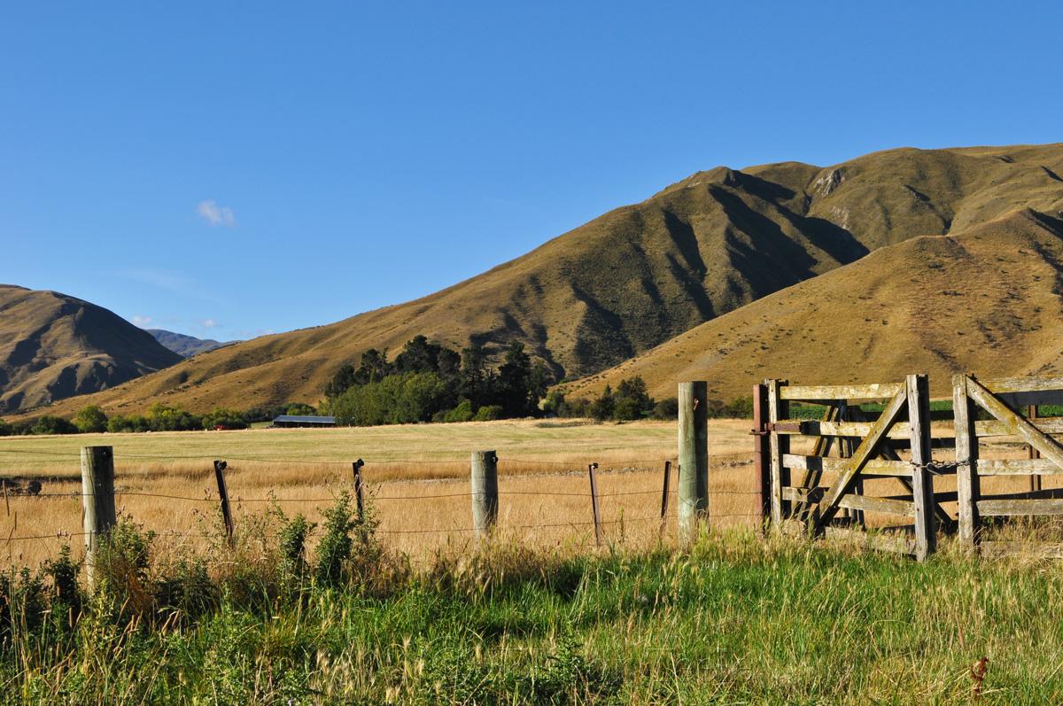 Farm Gate, Crown Terrace, Central Otago