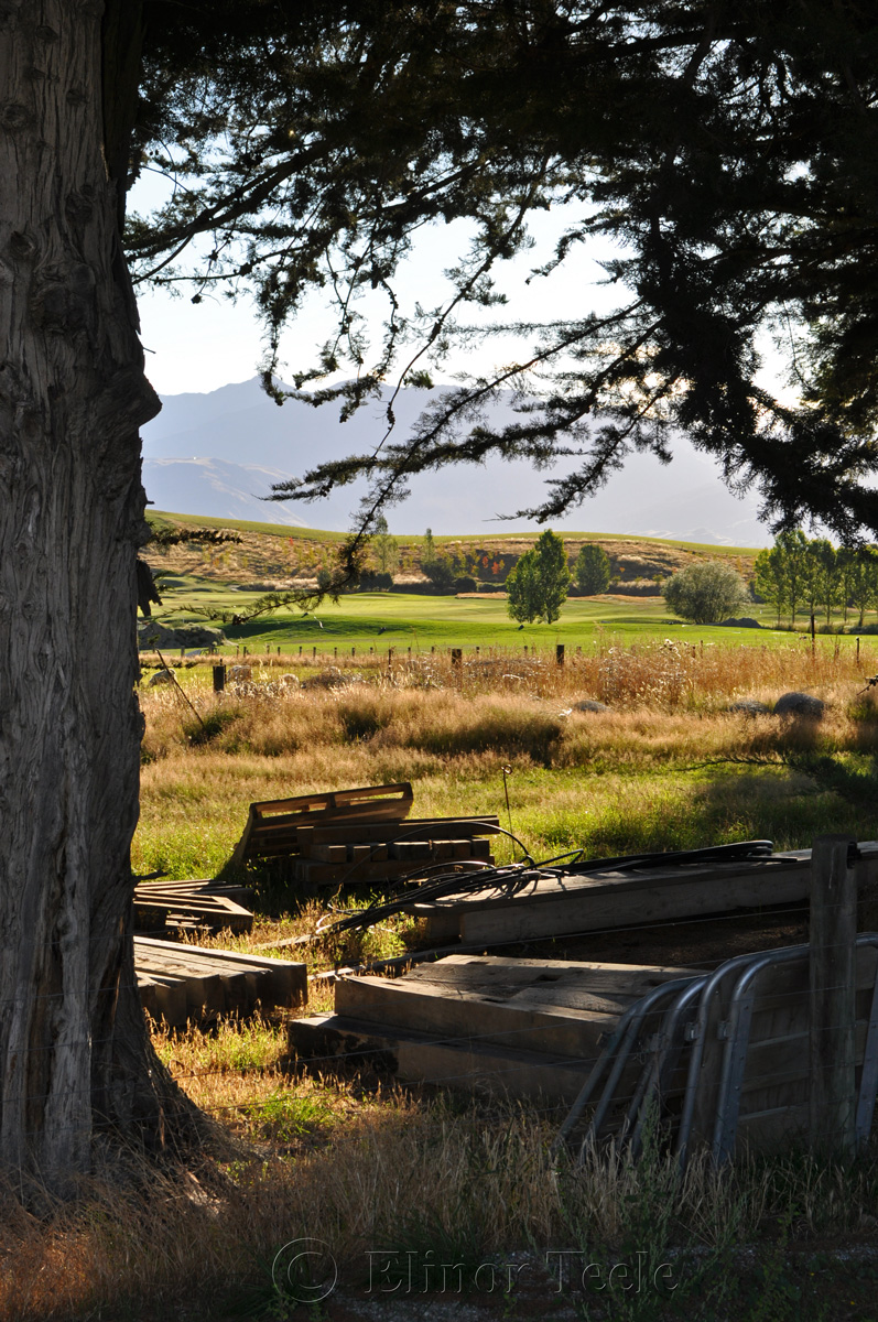 On the Farm, Crown Terrace, Central Otago 2