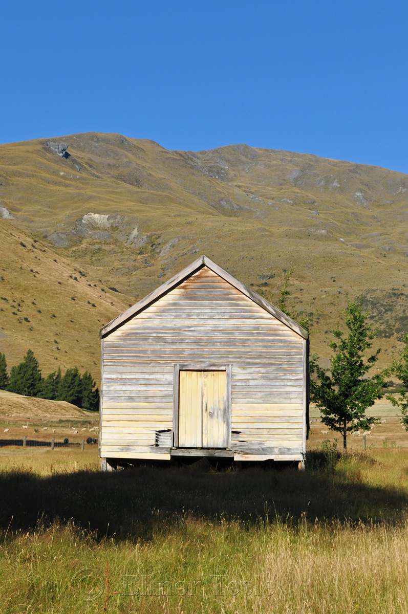 Shack, Crown Terrace, Central Otago 2