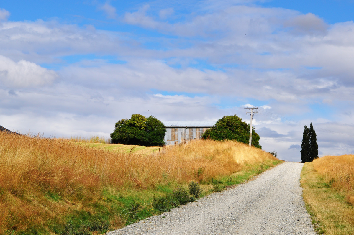 Shed, Central Otago