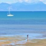 Abel Tasman Track 4
