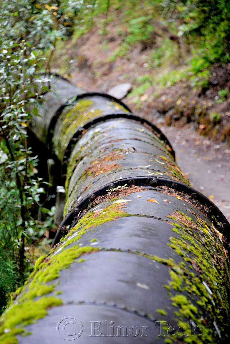 Arrow Irrigation Pipe, Arrowtown 2