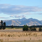 Canterbury Plains 2