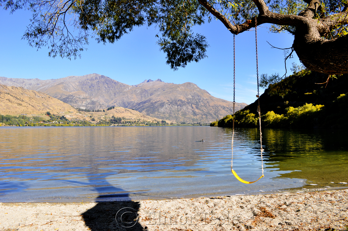 Lake Hayes Swing