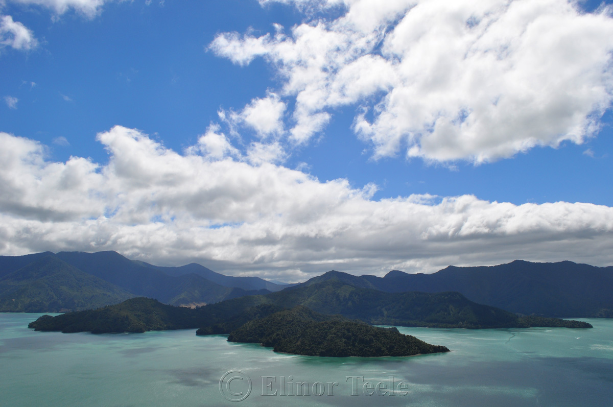 Queen Charlotte Track - On the Ridgeline
