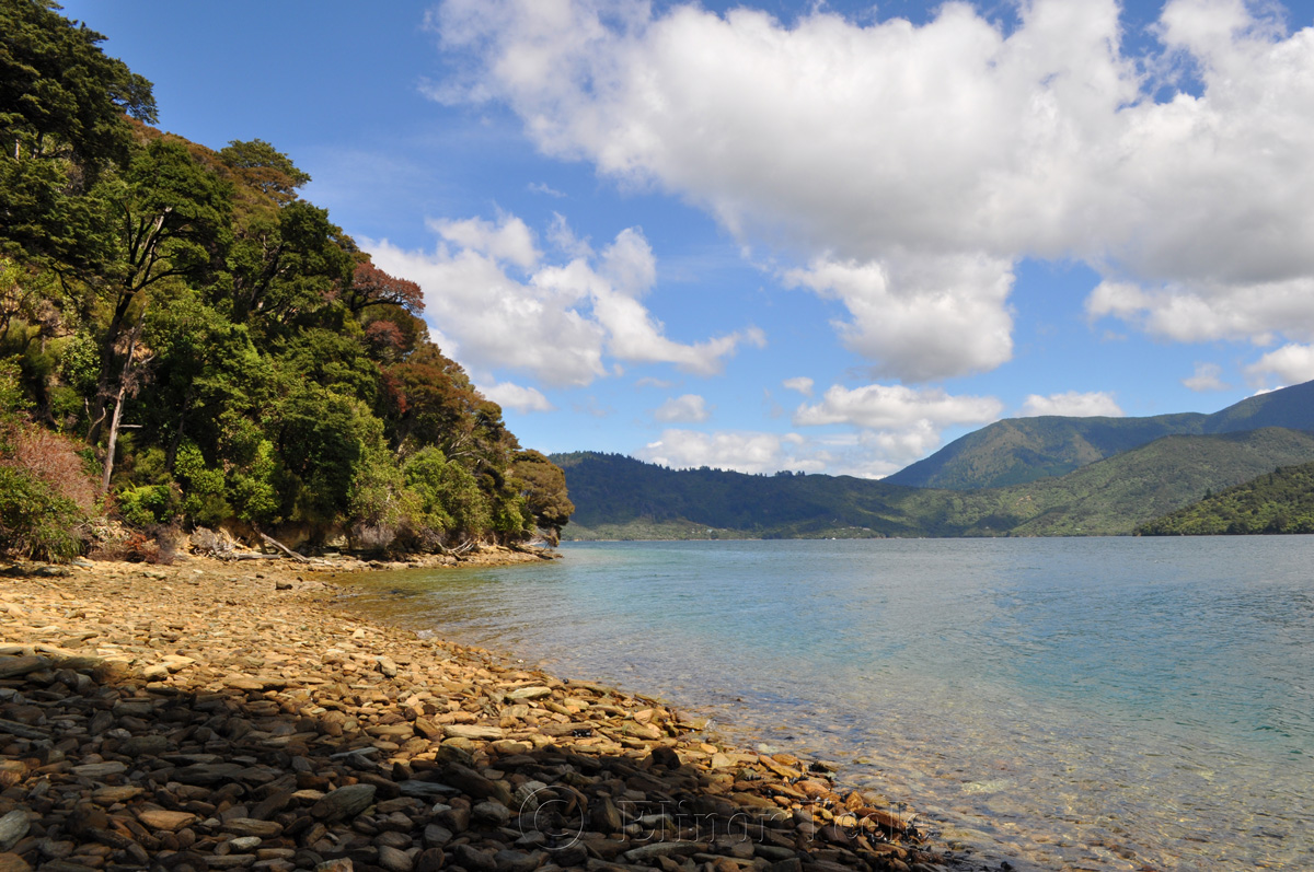 Queen Charlotte Track - Endeavour Inlet Beach
