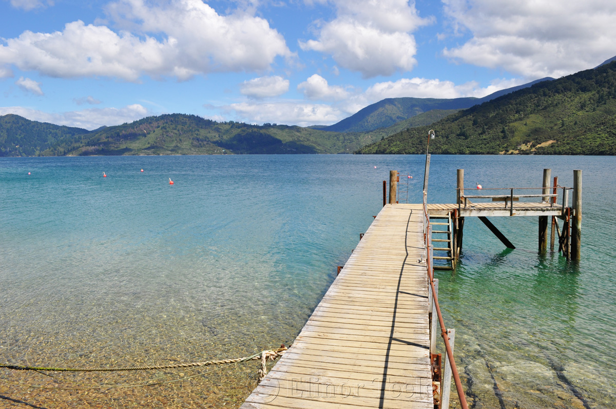 Queen Charlotte Track - Endeavour Inlet Pier