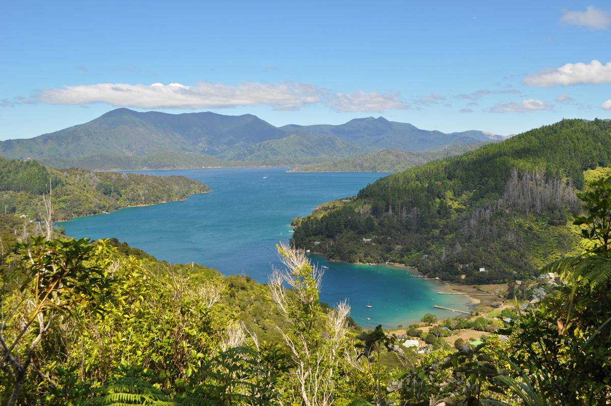 Queen Charlotte Track - Lochmara Bay