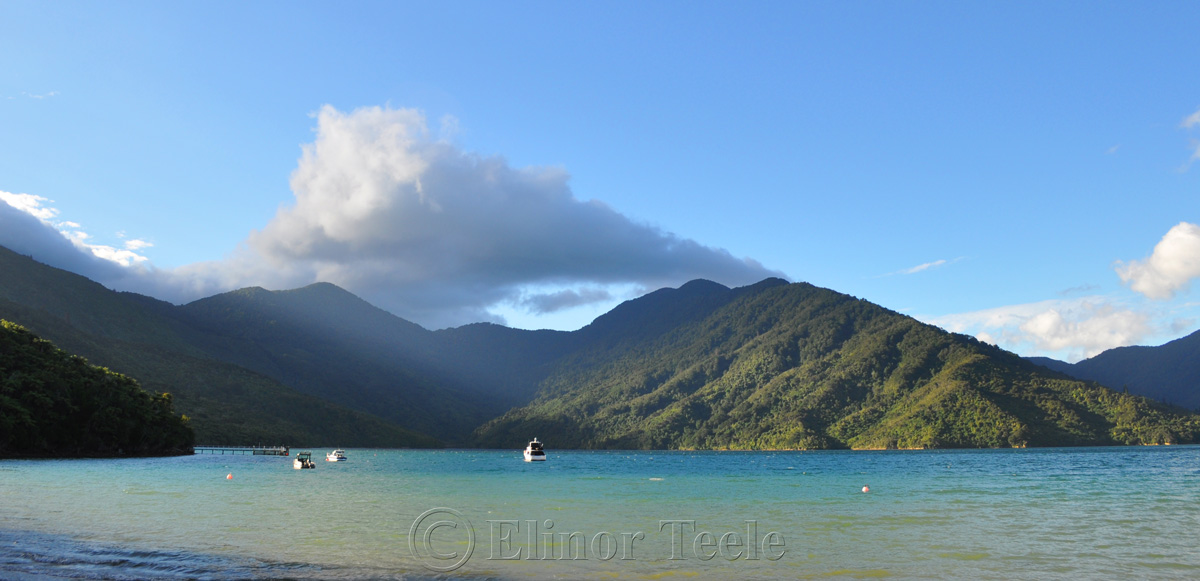 Queen Charlotte Track - Mahana Lodge in Afternoon Light 1