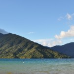 Queen Charlotte Track - Mahana Lodge in Afternoon Light 2