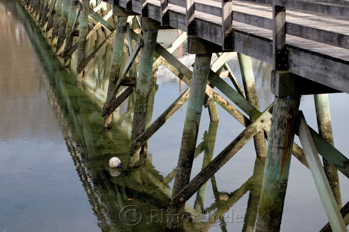 Bridge Pilings, Annisquam MA