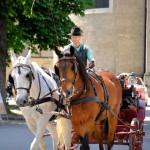 Horse-Drawn Carriages, Salzburg, Austria 1