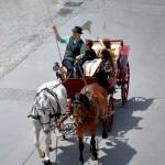 Horse-Drawn Carriages, Salzburg, Austria 2